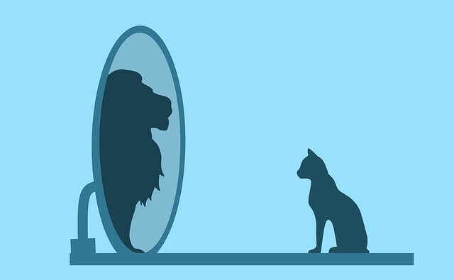 Cat looking in mirror as Lion. Moral story in Hindi.